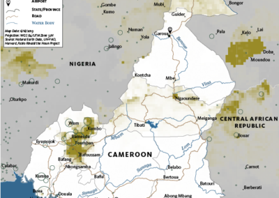 Cameroon cattle & Crime